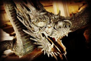 2015-07-13 Dragon
