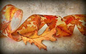 2015-11-23 fall leaf and ribbon leaves